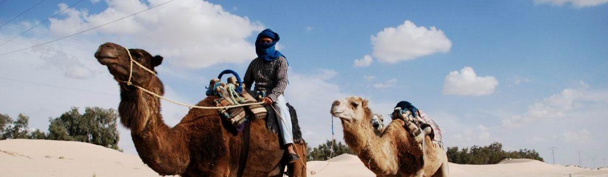 Sportland 4×4 – BnD4x4Team 2° Desert Tour Tunisia dal 24 aprile al 2 maggio 2010