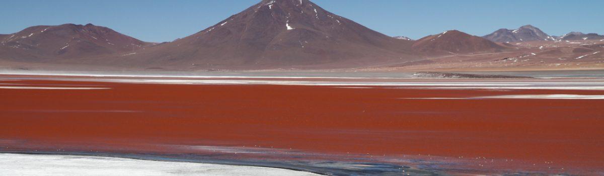 Viaggio 4×4 in Bolivia, Off Road fra Alpaca e Salar